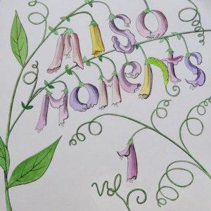 Miso Moments Vol 1